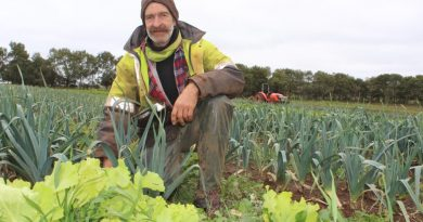 Angelica Organic Farm's Tim Wyatt has been farming for 12 years and doesn't want to see it come to an end.