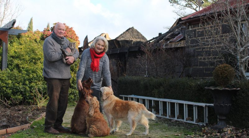 Michael Dowding and Tonia Todman with their cat Audrey, and dogs Bella, Rosie and Lucy.