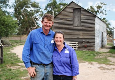 McIvor Farm Foods' Jason and Belinda Hagan specialise in pasture-raised, ethically grown, old breed of pigs.