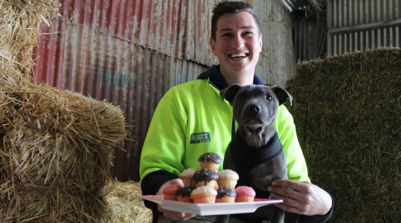 Perry's stock feed manager Kyle Baboth is pictured with Billie the staffy.