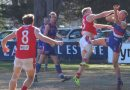 The Bulldogs' win against South Bendigo has pushed them along to the finals.