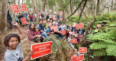 More than 60 local people gather in a cool wet gully to show their support for all the endangered species that exist in the Wombat Forest. They support the Victorian Environmental Assessment Council's proposal for a combination of regional, national and conservation parks in the area. Photo: Sandy Scheltema