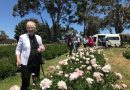 Peonies bring joy to special visitors