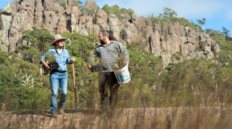 Newham Landcare member Penny Roberts and Hanging Rock environmental officer Daniel Young discuss where to plant the nationally endangered basalt peppercress at Hanging Rock Reserve. Photo: Sandy Scheltema