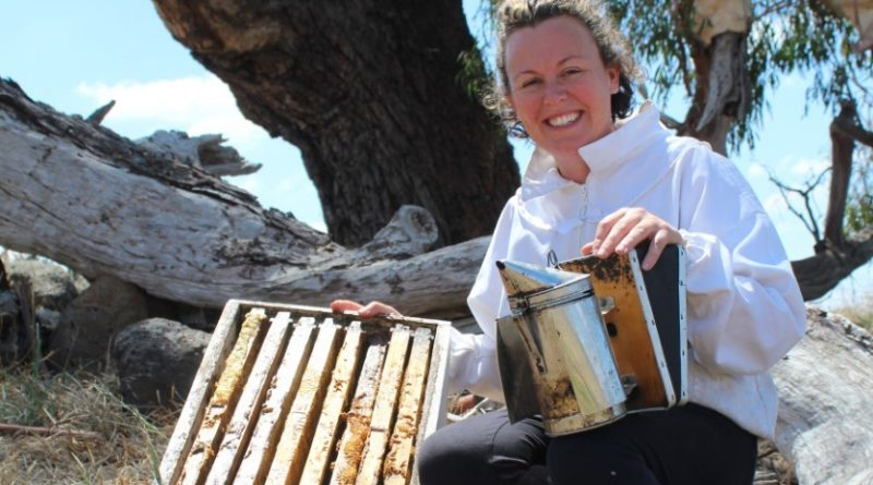 Claire Moore hopes to help solve the global problem of bee decline from her own backyard in Kyneton.