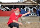 """Castlemaine's Cr Max Lesser with his self imposed """"art house"""" restoration project in Harcourt."""