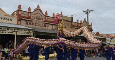The Central Victoria Lion Team was among the colourful parade entries that thrilled crowds.