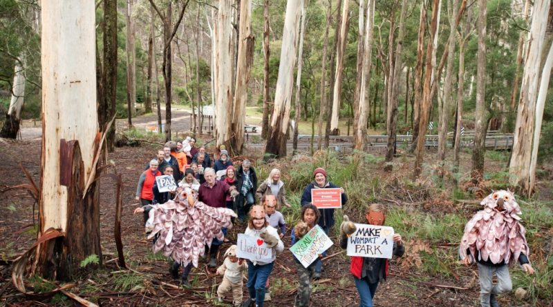 A win for conservation – National Park recommended for the Wombat Forest